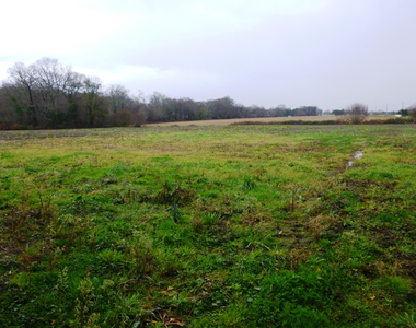 Sale Land 1 255m² Saint-Castin (64160) - photo