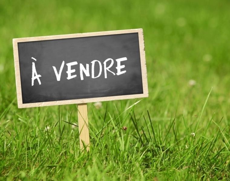 Vente Terrain Beaumont-sur-Oise (95260) - photo