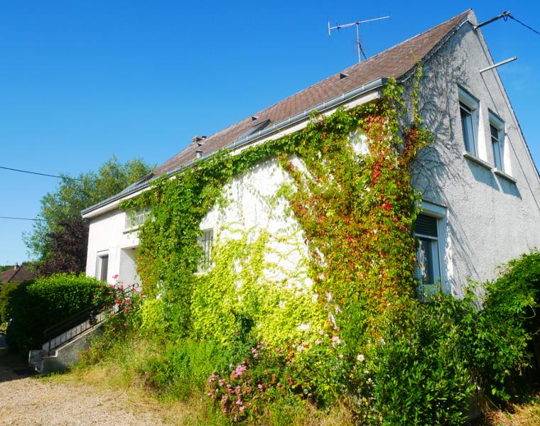 Vente Maison 7 pièces 173m² SAINT JEAN DE BRAYE - photo