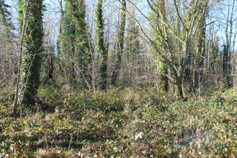 Vente Terrain 4 530m² Saint-Valery-sur-Somme (80230) - Photo 1