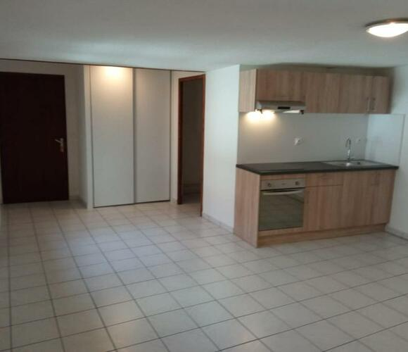 Location Appartement 1 pièce 32m² La Roche-sur-Foron (74800) - photo