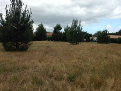 Vente Terrain 2 000m² Azur (40140) - photo