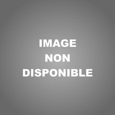 Vente Appartement 2 pièces 52m² Échirolles (38130) - photo