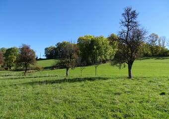 Vente Terrain 793m² Faucigny (74130) - photo