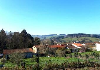 Vente Terrain 1 180m² Amplepuis (69550) - photo