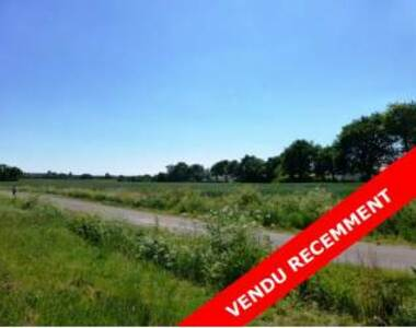 Sale Land 500m² Talmont-Saint-Hilaire (85440) - photo