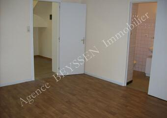 Location Appartement 1 pièce 25m² Brive-la-Gaillarde (19100) - photo