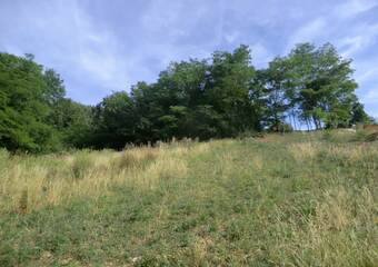 Vente Terrain 1 300m² Dizimieu (38460) - Photo 1