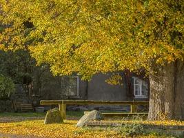 L'automne est là : préparez votre domicile !
