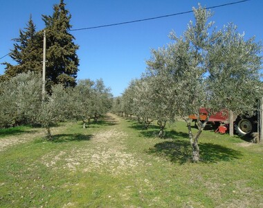 Sale Land La Tour-d'Aigues (84240) - photo