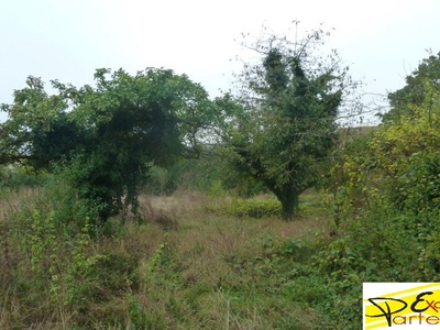 Vente Terrain 1 880m² Houdan (78550) - photo