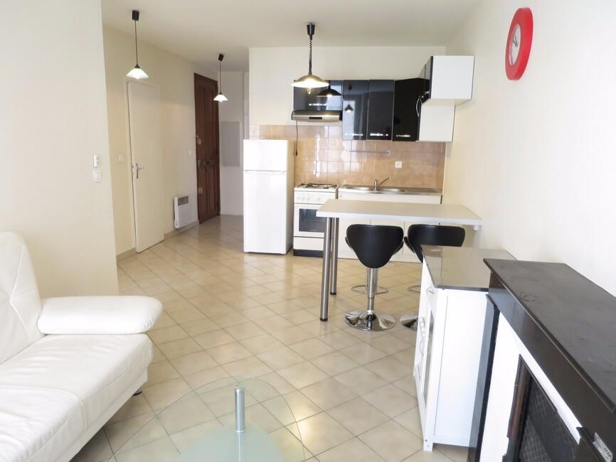 Location Appartement 3 pièces 48m² Grenoble (38000) - photo