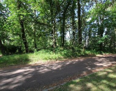 Vente Terrain 2 400m² Le Touquet-Paris-Plage (62520) - photo