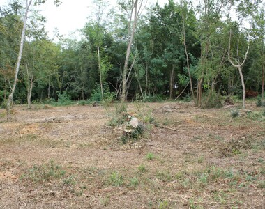 Vente Terrain 856m² Les Mathes (17570) - photo