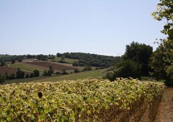 Sale Land 5 000m² L'Isle-en-Dodon (31230) - photo