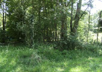 Vente Terrain 2 372m² 15 km sud Egreville - photo