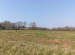 Sale Land 699m² Sorrus (62170) - Photo 3