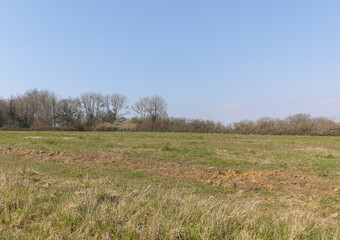 Sale Land 626m² Sorrus (62170) - Photo 1