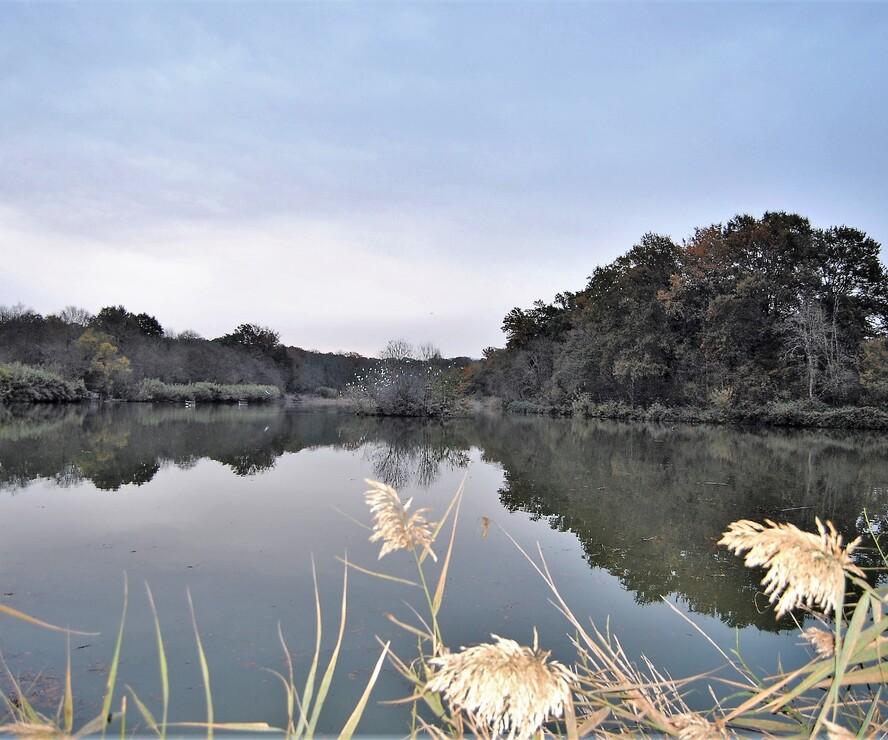 Sale Land 150m² SECTEUR VIC-FEZENSAC - photo