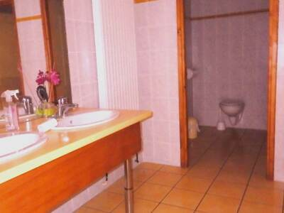 Vente Maison 15 pièces 440m² Saint-Dier-d'Auvergne (63520) - Photo 11