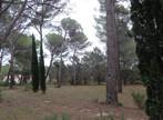 Sale Land 1 091m² Puget (84360) - Photo 5