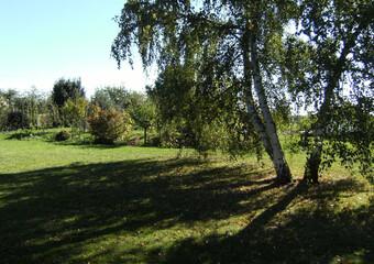 Vente Terrain 2 134m² 15 KM SUD EGREVILLE - photo