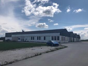 Vente Local industriel 10 pièces 3 400m² Châtillon-sur-Loire (45360) - Photo 1