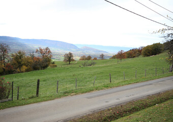 Vente Terrain 800m² Faucigny (74130)