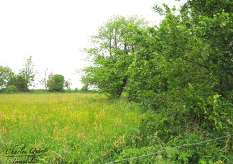 Sale Land 1 400m² Wailly-Beaucamp (62170) - photo