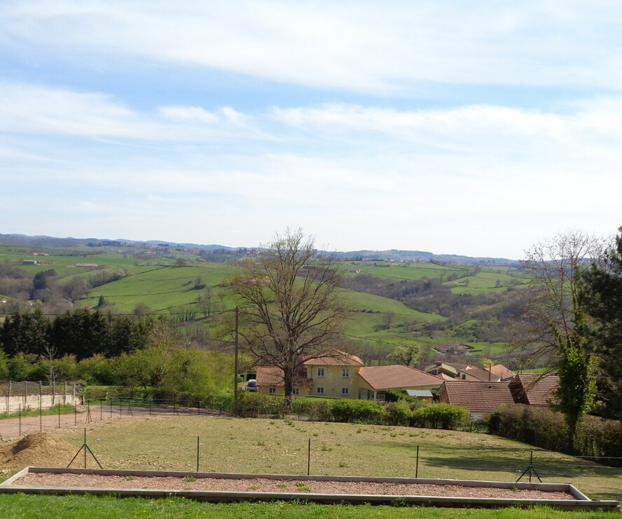 Vente Terrain 1 000m² Régny (42630) - photo