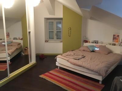 Location Appartement 6 pièces 270m² Dax (40100) - Photo 19