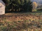 Vente Terrain 1 710m² La Bauche (73360) - Photo 2