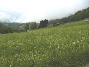 Vente Terrain 1 015m² Bellevaux (74470) - photo