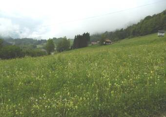 Vente Terrain 1 015m² Bellevaux (74470) - photo