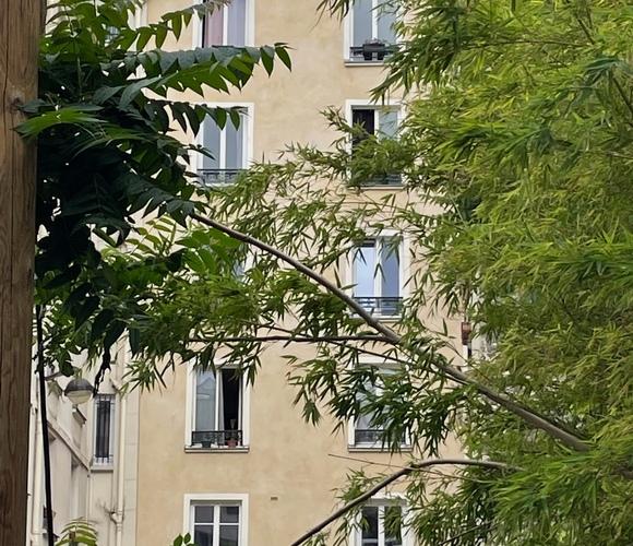 Vente Appartement 1 pièce 19m² Paris 18 (75018) - photo