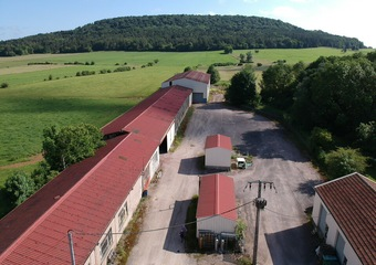 Location Local industriel 1 200m² Liffol-le-Grand (88350) - photo