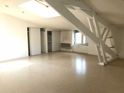 Location Appartement 3 pièces 55m² Saint-Étienne (42000) - photo
