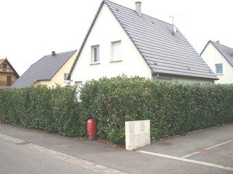Location Maison 5 pièces 118m² Sélestat (67600) - Photo 1