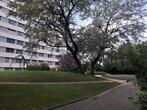 Location Appartement 2 pièces 47m² Seyssinet-Pariset (38170) - Photo 1