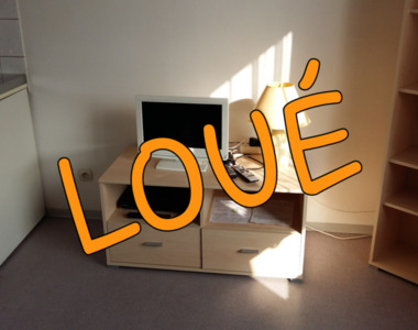 Location Appartement 1 pièce 20m² Sausheim (68390) - photo