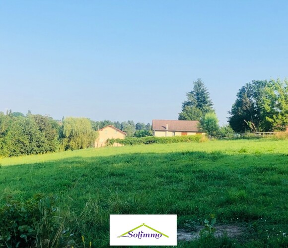 Vente Terrain 1 300m² Chimilin (38490) - photo
