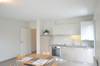 Location Appartement 2 pièces 50m² Sélestat (67600) - Photo 1