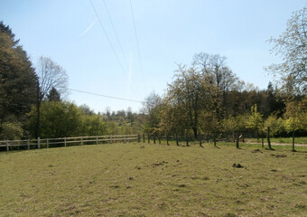 Vente Terrain 3 000m² FOUGEROLLES - photo