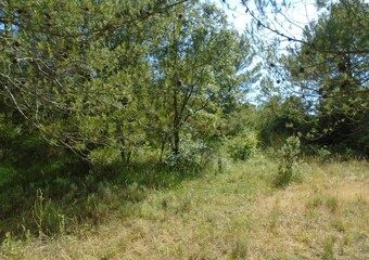 Sale Land 3 500m² Grambois (84240) - Photo 1