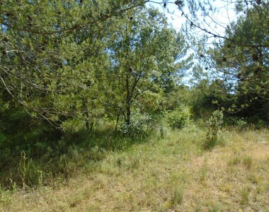 Vente Terrain 3 500m² Grambois (84240) - photo