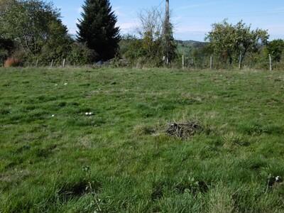 Vente Terrain 1 022m² Domaize (63520) - Photo 8