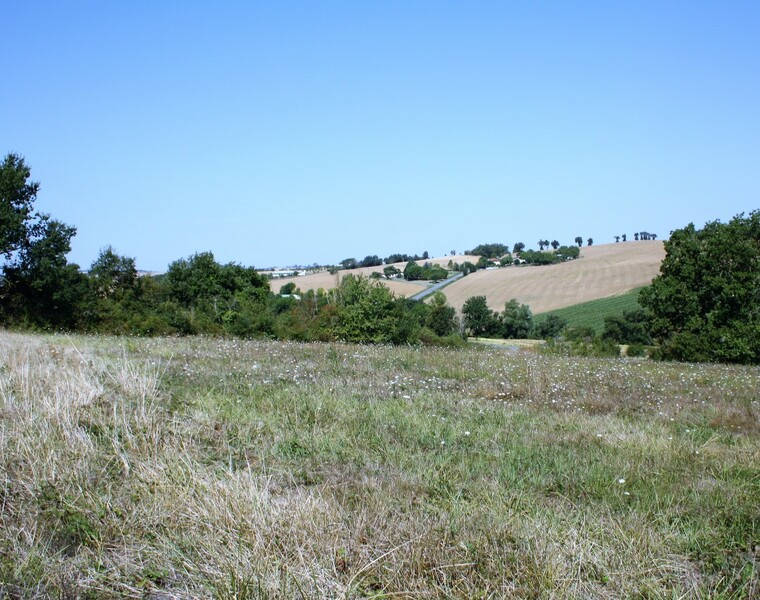 Sale Land 2 036m² SECTEUR SAMATAN-LOMBEZ - photo