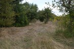 Sale Land 1 000m² Houdan (78550) - Photo 2