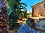 Vente Maison 5 pièces 96m² Île du Levant (83400) - Photo 9