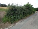 Vente Terrain 1 049m² Montagny (42840) - Photo 2